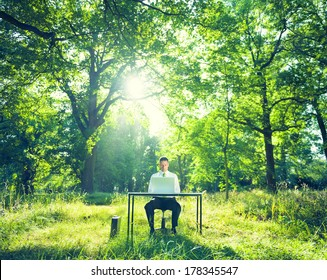 Businessman Working at Desk in Green Forest