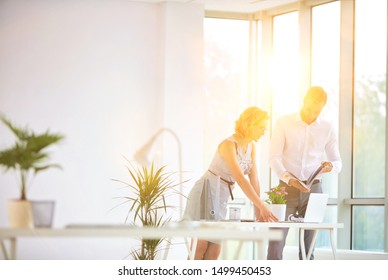 Businesswoman discussing plans with businessman in office with yellow lens flare in background