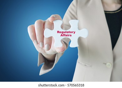 Businesswoman holding a piece of jigsaw puzzle: Regulatory Affairs
