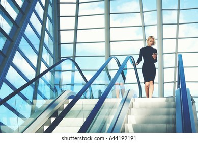 Businesswoman is reading financial news on web page via cell telephone, while is going to work break on moving staircase of big skyscraper office. Woman is reading message on phone and use escalator