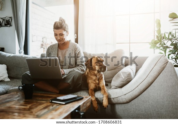 Businesswoman working on laptop computer sitting at home with a dog pet and managing her business via home office during Coronavirus or Covid-19 quarantine
