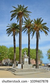 The bust of Pascal Paoli is surrounded with the palm trees in the main square with a covered market.