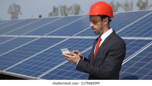Busy Business Man Calculate with Calculator in Solar Panels Power Farm, Photovoltaic Cell Park, Green Energy Concept