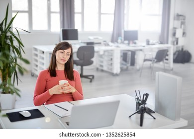Busy charming brunette dressed casual drinking coffee and looking at latop. Modern office interior.