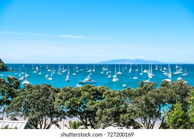 Busy crowded anchorage with many boats causing possible water pollution and sewage contamination at Oneroa Beach Bay, Waiheke Island, New Zealand, NZ