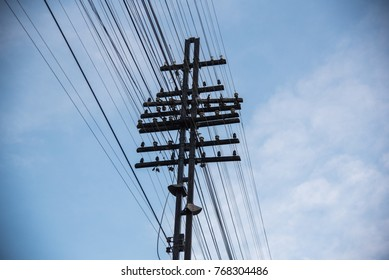 busy of electricity and telephone cables on electrical pole.
