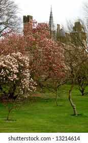 Bute park in Cardiff, Wales