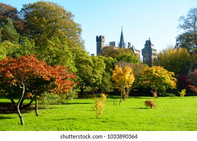 Bute Park with sunlit trees in vibrant autumn colours and Cardiff Castle in the background.