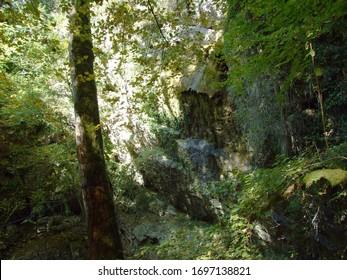 Butori waterfall during the dry season and without water, Sterna - Istria, Croatia (Slap Butori tijekom susne sezone i bez vode, Sterna - Istra, Hrvatska) - Shutterstock ID 1697138821