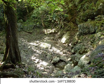 Butori waterfall during the dry season and without water, Sterna - Istria, Croatia (Slap Butori tijekom susne sezone i bez vode, Sterna - Istra, Hrvatska) - Shutterstock ID 1697138830