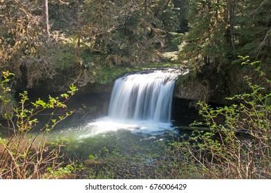 Butte Creek Falls, Oregon