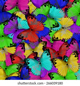 Butterfly, beautiful abstract pattern background texture made from compilation of colorful butterfly.