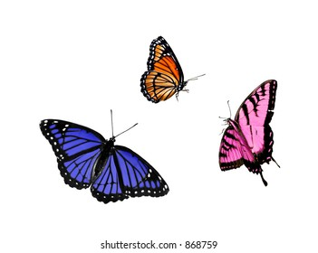 butterfly collection different colors (3 for 1 great value)