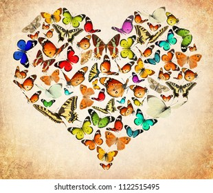Butterfly flying. Heart created of colorful butterflies. Old paper texture