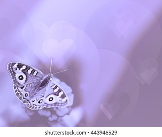 Butterfly with hearts on purple background for sympathy and symbol of life hope soul and resurrection