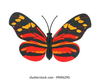 butterfly invents on white background
