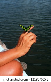 Butterfly lands on woman's hand, jungle lodge in the Amazonian Rainforest, Ecuador