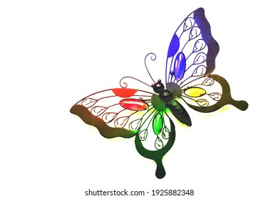 A butterfly with many colours