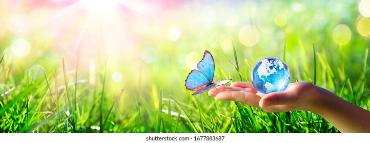 Butterfly meet Human Hand With Glass Globe - Love And Care Environment Concept  - Shutterstock ID 1677883687