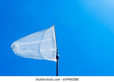 butterfly net in the blue sky (aerial insect net)