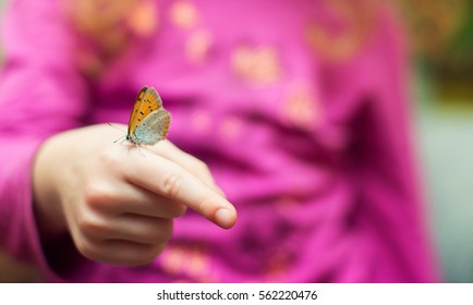 Butterfly on a finger