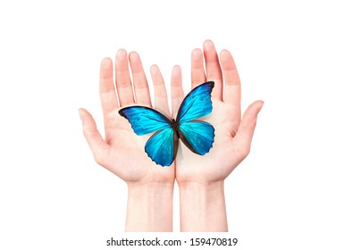 butterfly on man's hand. freedom and hope concept