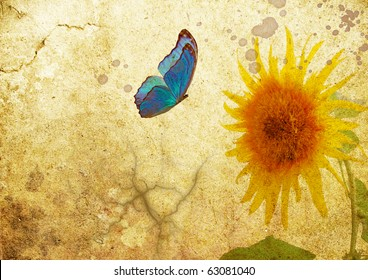 butterfly on old vellum with sunflower