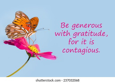 Butterfly on a pink flower with a quote - Be generous with gratitude, for it is contagious