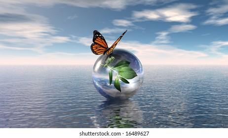 Butterfly on sphere