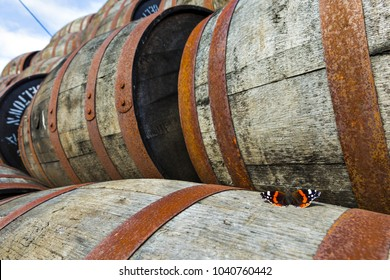 Butterfly on stacked pile of old wooden barrels and casks at whisky distillery in Scotland.