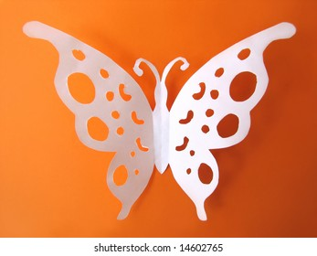 butterfly from paper on bright background