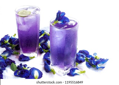 Butterfly pea juice or blue pea flower herbal tea for drink on white background.