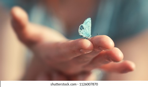 Butterfly sits on a woman hand. Blue, fragile butterfly wings on woman fingers create harmony of nature, beauty magic close-up. Macro.