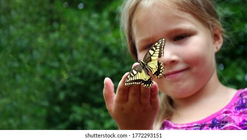 Butterfly sitting on the hand of a child. Child with a butterfly. Swallowtail butterfly on the hand of a little girl. Selective focus.