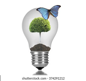 Butterfly sitting on light bulb with green tree isolated on white
