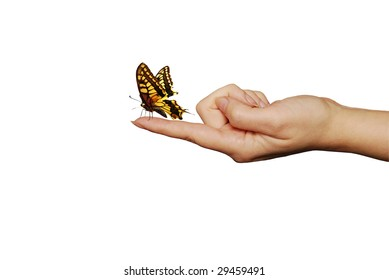 butterfly sitting on a woman finger, imagination concept