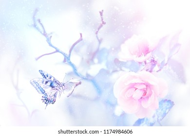 Butterfly in the snow on pink roses in a fairy garden. Artistic Christmas image. Delicate gentle tone.
