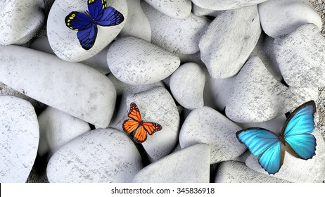 Butterfly and stones as background. A light blue butterfly in a zen garden with black sand. brown red and blue  butterflies on stone.