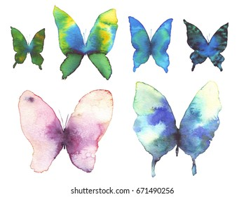butterfly watercolor illustration