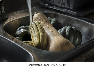 Butternut, acorn, delicata Squashes in the kitchen with waterr splash with moody light, lit by a window light