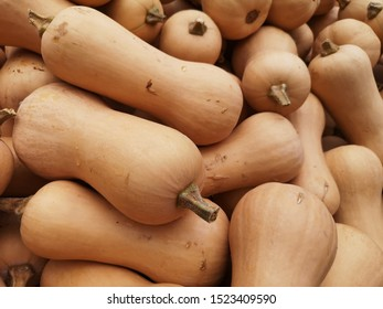 Butternut squash is a type of winter squash that grows on a vine. It has a sweet, nutty taste similar to that of a pumpkin. Fat-free, great source of beta-carotene,vitamin C, and good source of fiber.