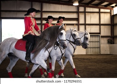 Buxton, Maine / USA - August 26 2012: Herrmann's Royal Lipizzan Stallions at Hearts & Horses Therapeutic Riding Center
