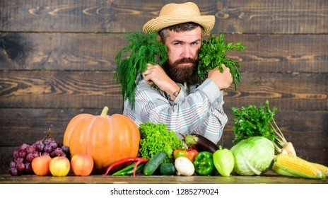 Buy fresh homegrown vegetables. Excellent quality vegetables. Man with beard proud of his harvest vegetables wooden background. Farmer with organic vegetables. Just from garden. Grocery shop concept.