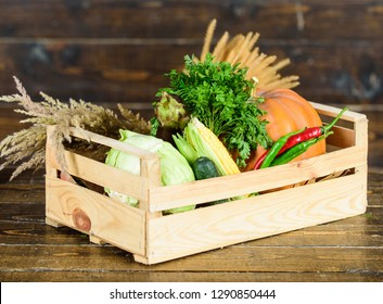 Buy fresh homegrown vegetables. Just from garden. Delivery service fresh vegetables from farm. Box or basket harvest vegetables wooden background. Excellent quality vegetables. Grocery shop concept.