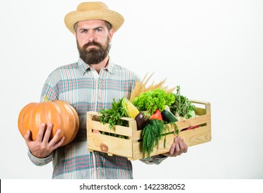 Buy local foods. Farmer rustic bearded man hold wooden box with homegrown vegetables and pumpkin white background. Farmer carry harvest. Locally grown foods. Farmer lifestyle professional occupation.