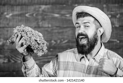 Buy vegetables local farm. Farm market harvest festival. Man bearded farmer with vegetables rustic style background. Sell vegetables. Local market. Locally grown crops concept. Homegrown vegetables.