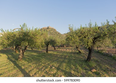 By the village of Vilafames in Castellon in Spain