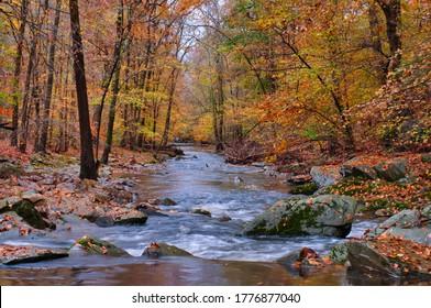 Bynum Run Creek in Bel Air Maryland