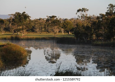 Byron bay isolated pond under sunrise light with off some kangaroos