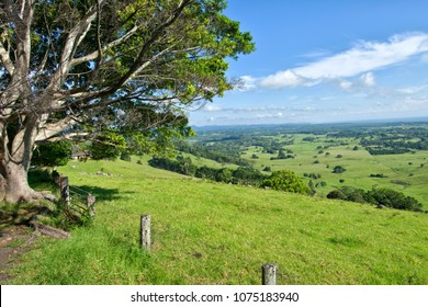 Byron Shire landscape in the sumer. In Australia.